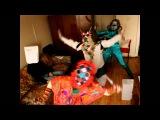 Harlem Shake_Drugs&Dragons_for_Animau no Haru