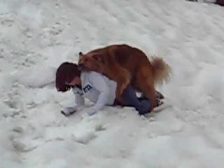 Собака трахает девушку секс с собакой трахаться
