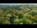 Тропический рай Борнео: Серия 1