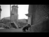 Nacho Sotomayor - Walking with a Bear