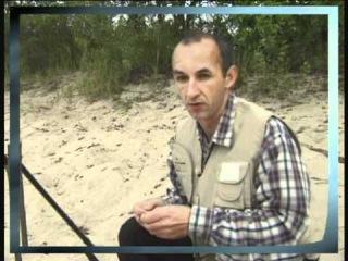 Chub fishing on a may-bug\Ловля голавля на майского жука