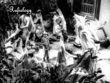 Chhota Bhai - Baaje Baaje Mridang - Mohd.Rafi, Asha Bhonsle & Chorus