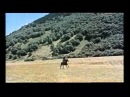 Бэла (1966 г): черкесская джигитовка