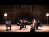 Ferdinando Carullis Petit Guitar Concerto in E minor Op.140