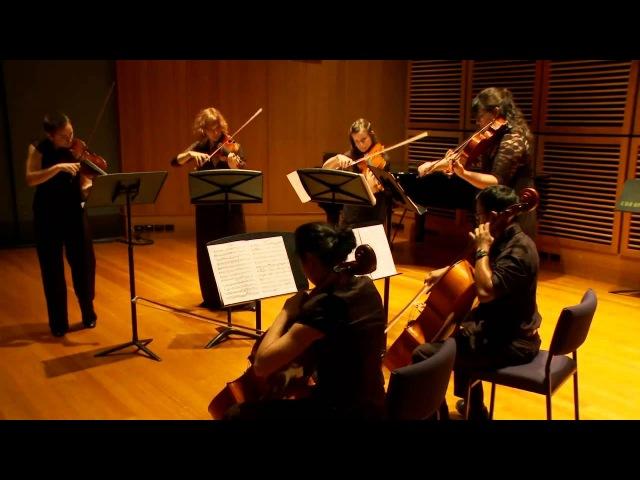 П.И. Чайковский - струнный секстет «Воспоминание о Флоренции» ( Mvt 1 | Sydney Camerata)