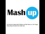 Tha Groove Junkeez feat. Al Walser and Alex Menco vs. Slin Project - Flying Away (DJ Sasha Virus Mash Up)