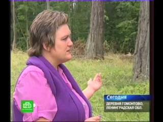 Парк усадьбы Гомонтово. Репортаж канала НТВ от 24.08.2012