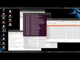Сервер CS 1 6 на Linux csextreme ru