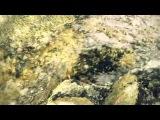 Okkervil River-