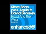 Steve Brian pres. Agulo feat. David Berkeley - Blood And The Wine (Original Mix)
