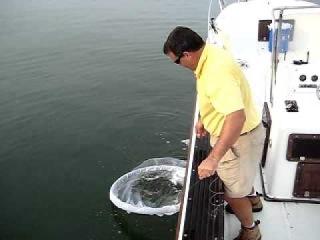 рыбалка на Cast Net с катера