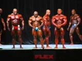 Victor Martinez, Dexter Jackson, Jay Cutler, Ronnie Coleman 2006 Mr. Olympia Men's Prejudging