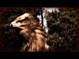 FADY MAALOUF - NEYLA - ( OFFICIAL VIDEO )