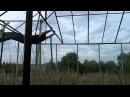 Nikolay Sysuev - Part