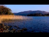 Relax under a Warm Evening Sun by the Lake Shore with Beautiful Peaceful Sounds of Nature WO Music