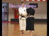 Shorinji Kempo, Araki Ryu, Daito Ryu, Tenshin Shoden Katori Shinto Ryu, Seki Ryu