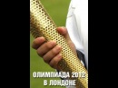 Олимпиада 2012 в Лондоне Ирландцы рады Тэйлору