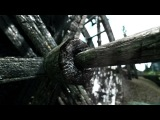 Skyrim (SkyrimTuner ENB Config)