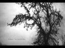Max Cooper feat. Braids - Pleasures (Corps Exquis Remix)