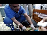 Ground Zero: Syria (Part 1) - Assad's Child Victims