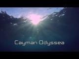 Cayman Odyssea