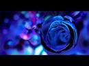 Граффити - Синяя роза