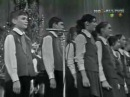 Birthday song, russian talented singer Pust' begut ne uklyuzhe pewehodi po luzham