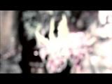 Танец Камасутра - Часть1 (с Хемалая) — смотреть онлайн видео, бесплатно!