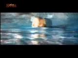 Zeljko Samardzic - 9000 Metara