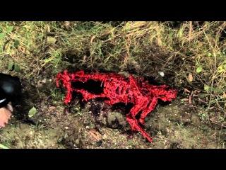 Воронье гнездо / CROWSNEST - Movie Trailer 2012