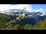 Aleksey Beloozerov - I Run To You (Juventa Remix) HD