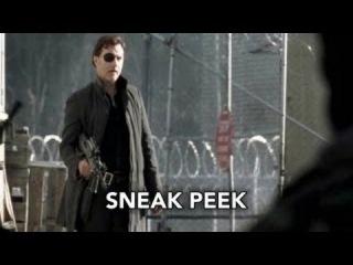 3x16 Отрывок #1: Ходячие мертвецы (The Walking Dead) -  3 сезон 16 серия