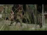 «Ходячие мертвецы» (2010 – ...): ТВ-ролик (сезон 3, эпизод 11)