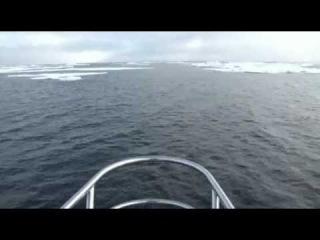 "The yacht ""Scorpius"" broke away from ice captivity"