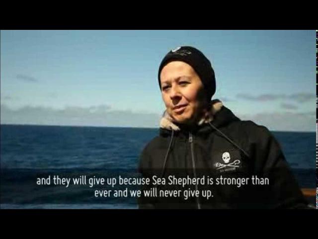 Meet The Crew - Veronika Kristoff, Budapest, Hungary, Steve Irwin, Operation Zero Tolerance