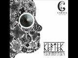 Kertek - Termites carica records