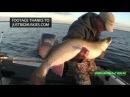 Big Fish 365 Episode 12- ESOX Superfish, Huge Mille Lacs Muskies, Huge Green Bay Muskies