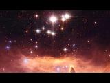 Светопись. Фото 2. Киш-миш в Скорпионе