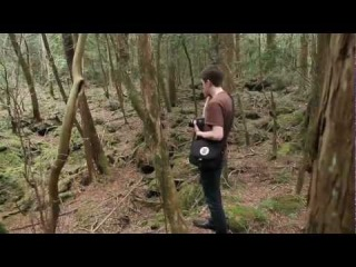 Aokigahara, Japan's Suicide Forest