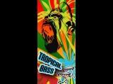 Tropical Bass VK Podcast - Midget Ninjas Exclusive SOVIET BASS Baile Funk, 3ball Guarachero, Tropical Bass