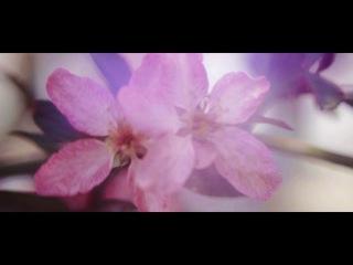 Весна в Суханово-Парке