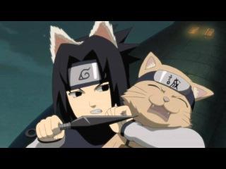 Naruto funny AMV