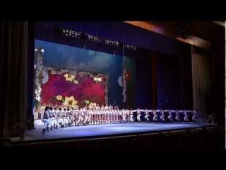 молдавский народные танцы Ansamblul Joc 07.03.2012