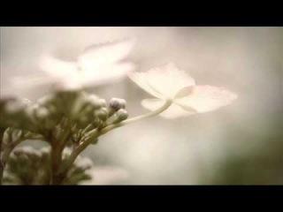 Yuki Murata - Glitch
