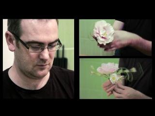 Мастер класс Alan Dunn по цветам из мастики (класс 1)