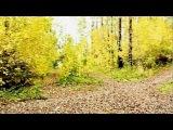 Merry ZlaTrec - Осень Paulbeatz prod.