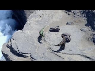 Видео к мультфильму «Тарбозавр 3D»