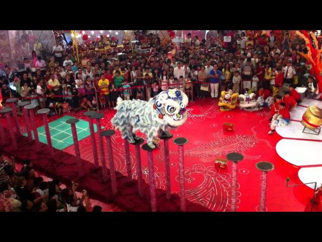 CNY 2012 Acrobatic Lion Dance Duet Solo by Kun Seng Keng @ 1 Utama