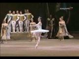 Balletto Classico -Raymonda -Svetlana Zakharova