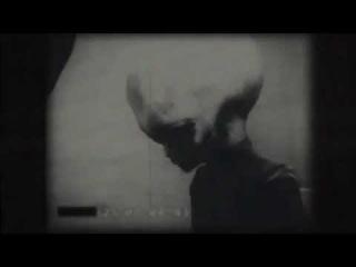 Живой пришелец, утечка видео зона 51